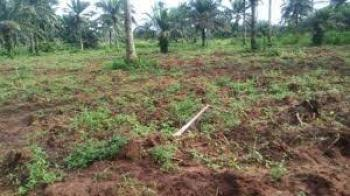 14 Hectares, R of O, Kunape, Cultural Zones, Abuja, Residential Land for Sale