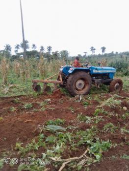 Farmland, West Agro Farm Nero, Ijebu East, Ogun, Tank Farm for Sale