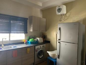 Fully Furnished & Serviced 2 Bedroom, Off Kusenla Road, Ikate Elegushi, Lekki, Lagos, Flat for Rent