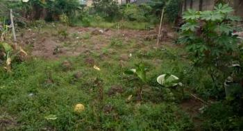 Half Plot of Land (gated and Fenced), Maplewood Estate, New Oko-oba, Agege, Lagos, Residential Land for Sale