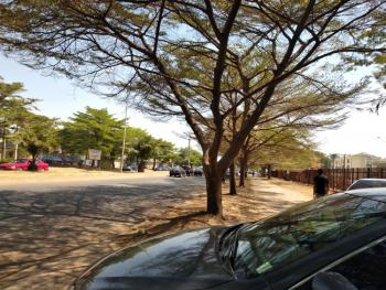 1 Hectare Commercial Plot of Land, After Mr Biggs, Jabi, Abuja, Commercial Land for Sale