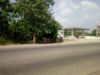 Government Approved Plots of Land Facing Tarred Road, Ikire Ife- Ibadan Road, Irewole, Osun, Mixed-use Land for Sale