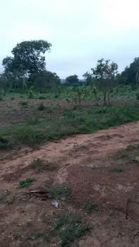 5 Hectares Bare Land for Residential Housing Estate, Jahi, Abuja, Residential Land for Sale