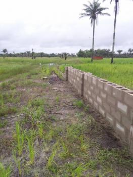 Affordable Land, Orimedu, Ibeju Lekki, Lagos, Residential Land for Sale
