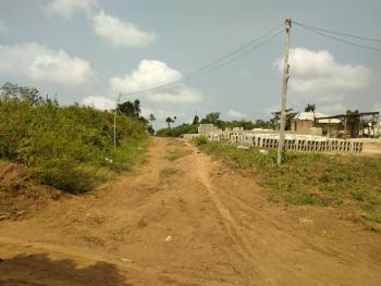 a Virgin Land, Lemomu Road, Atan Ota, Ado-odo/ota, Ogun, Residential Land for Sale