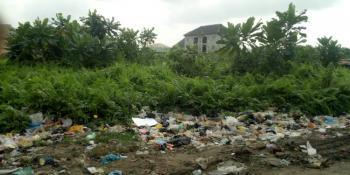 Land at Urban Center, Awoh Jonathan Street, Agia Community Estate, Kirikiri, Amuwo Odofin, Lagos, Mixed-use Land for Sale