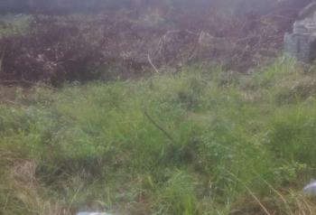 Governors Consent Plot of Land, Ajayi Apata Estate, Sangotedo, Ajah, Lagos, Land for Sale