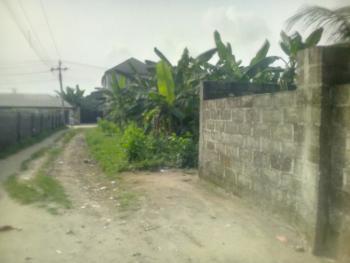 Full Standard Virgin Plot of Land, Eneka, Port Harcourt, Rivers, Mixed-use Land for Sale