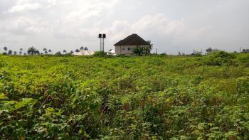 Cut-rate Land., Shelter Afrique Extension, Uyo, Akwa Ibom, Mixed-use Land for Sale