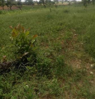 10 Hectares Land Available for Mass Housing Estate, Landmark: Trademore Estate, Sabon Lugbe, Lugbe District, Abuja, Mixed-use Land for Sale