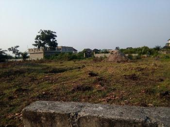 Two Large Plots of Land in a Developed Estate, in a Developed Estate Before Sangotedo, Ajah, Lagos, Residential Land for Sale