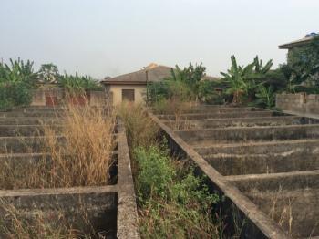 Commercial : 52 Fish Ponds on 5 Plots of Land, Ogijo Via Ikorodu, Ogijo, Sagamu, Ogun, Commercial Property for Sale