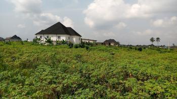 Choice Bare Land, Shelter Afrique Extension, Uyo, Akwa Ibom, Mixed-use Land for Sale