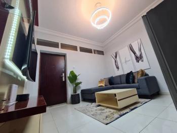 Exquisitely Furnished, Lekki Phase 1, Lekki, Lagos, Flat / Apartment Short Let