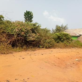 2 Plots of Dry and Bare Land in a Developed Location, Isiwu, Ikorodu North, Ikorodu, Lagos, Residential Land for Sale