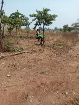 Residential Land, Mike Ozekhome Crescent, Asokoro District, Abuja, Residential Land for Sale