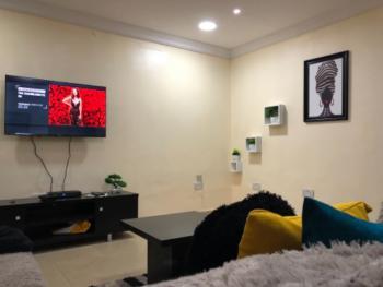 Two Bedroom Flat, Corporation Drive, Dolphin Estate, Ikoyi, Lagos, Flat Short Let