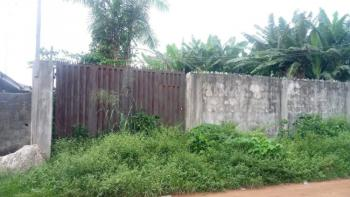 a Fenced and Gated Full Plot of Land, Ita Oluwo Area, Odogunyan, Ikorodu, Lagos, Mixed-use Land for Sale