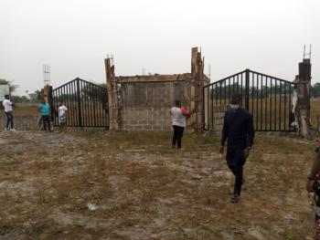 Get a Fascinating 100% Dry Land with Residents Already in It Environs., Few Minutes After La Campagne Int., Beach Resorts Centre, Folu-ise, Ibeju Lekki, Lagos, Mixed-use Land for Sale