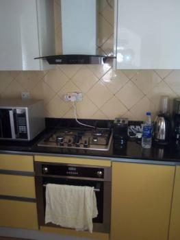 2 Bedroom Fully Fitted Terrace with Bq, Old Ikoyi, Ikoyi, Lagos, Terraced Duplex for Rent