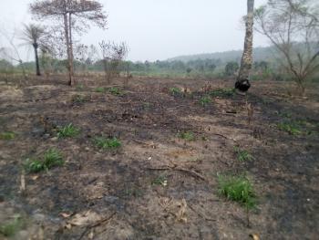 Over 200,000 Acres of Land, Ijebu-igbo, Ijebu North, Ogun, Mixed-use Land for Sale