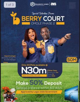 Berry Court, Omole Phase 2, Ikeja, Lagos, Mixed-use Land for Sale