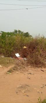 a Full Plot of Land, Ojokoro, Odogunyan, Ikorodu, Lagos, Mixed-use Land for Sale