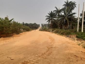Land, Max Ville Estate, Ebiet Okon Archibong, Anyanganse, Calabar, Cross River, Mixed-use Land for Sale