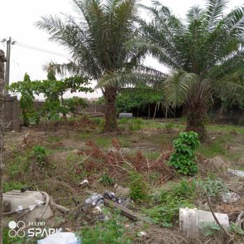 a Ready to Build 2700sqm Plot Is Available for Jv Activation, Igbo Efon, Lekki, Lagos, Commercial Land Joint Venture