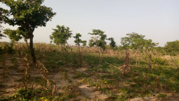 180 Hectares for Mass Housing Fcda R of O Handy, Wura, Apo, Abuja, Residential Land for Sale