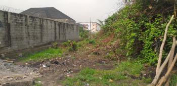 Dry Land Measuring 1196.74 on a Tarred Road, Off Mobil Estate Road By Fire Service Off Abraham Adesanya Estate, Lekki Phase 2, Lekki, Lagos, Residential Land for Sale