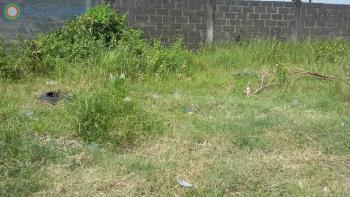 Land, Lekky County, Ikota, Lekki, Lagos, Residential Land for Sale