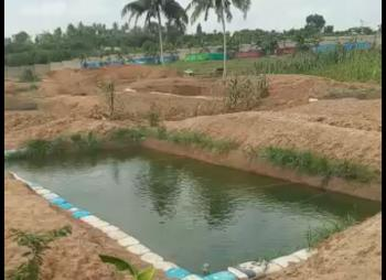 16 Plots of Fish Farm Land, Agbara, Ado-odo/ota, Ogun, Mixed-use Land for Sale