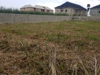 Dry Land, Inside Peace Estate, Blenco Bus Stop, Ajah, Lagos, Residential Land for Sale