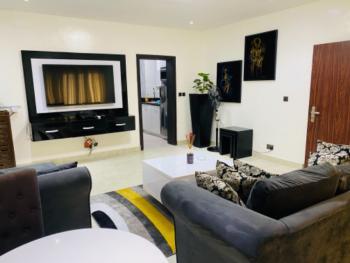 1 Bedroom Fully Furnished Apartment, Lekki Phase 1, Lekki, Lagos, Mini Flat Short Let