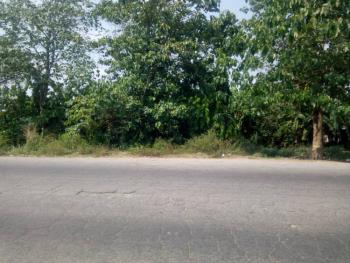 Plots of Land Facing The Express, Ikire Ife-ibadan Road, Irewole, Osun, Mixed-use Land for Sale