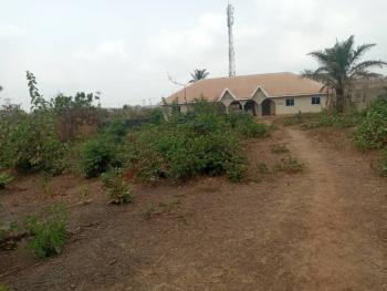 1500sqm Fenced and Gated Land with C of O, Independence Layout Phase 2, Close to Enugu/ph Expressway, Enugu, Enugu, Residential Land for Sale