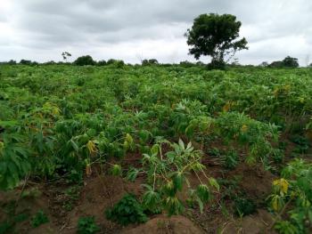 Very Large and Massive Acres of Land, Off Lusada-igbesa Road, Otta, Ado-odo/ota, Ogun, Mixed-use Land for Sale