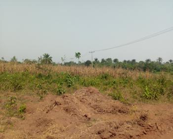 Land Available, Frontier Homes, Alapoti, Atan Ota, Ado-odo/ota, Ogun, Mixed-use Land for Sale