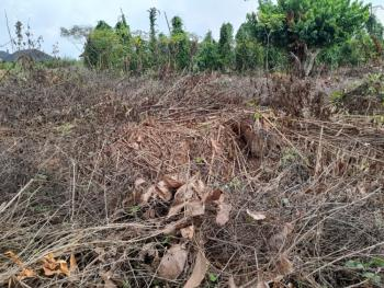 100ft By 100ft Land with Deed of Transfer, Okhoromi, Off Airport Road, Benin, Oredo, Edo, Residential Land for Sale