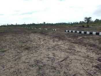 Plots of Land with Excision, Ross Haven Estate Free Trade Zone Along The Coastal Road Ibeju Lekki, Lekki Free Trade Zone, Lekki, Lagos, Mixed-use Land for Sale