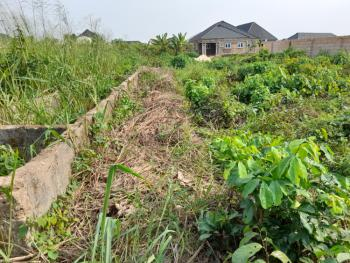 100ft By 100ft Land with Deed of Transfer, Evbuodia, Utagban, Off Airport Road, Benin, Oredo, Edo, Residential Land for Sale