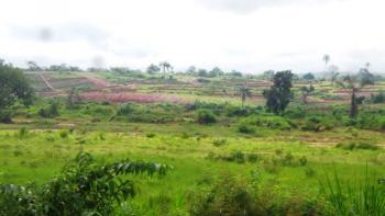 22.7 Hectares for Mass Housing with Letter of Intent (fcda Allocation), Karsana West, Karsana, Abuja, Residential Land for Sale