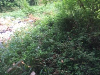 One Acre of Land ( 6 Plot of Land), Facing Ogombo Expressway, Ogombo, Ajah, Lagos, Mixed-use Land for Sale