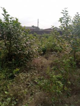 a Full Plot of Dry Land, Gowon Estate, Egbeda, Alimosho, Lagos, Mixed-use Land for Sale
