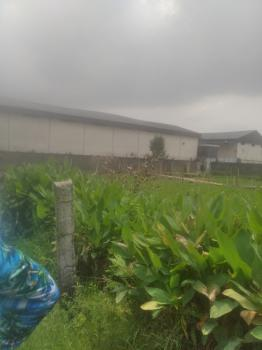Full Plot of Land with Raft Foundation, Divine Estate at Startimes Estate, Amuwo Odofin, Lagos, Residential Land for Sale