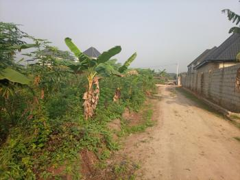 Well Accessible Dry and Table Flat Land, Conerstone/ Off Nta Road, Uzuoba, Port Harcourt, Rivers, Mixed-use Land for Sale