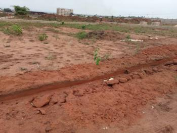 100 By 100 Land, Asaba - Onitsha Express Road, Asaba, Delta, Land for Sale