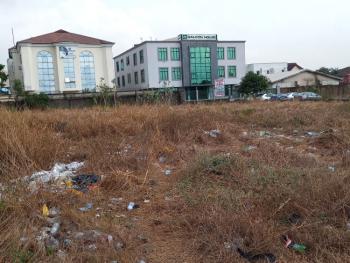 1952sqm Land, Facing Lekki Epe Express Way, Ikate, Lekki, Lagos, Mixed-use Land for Sale