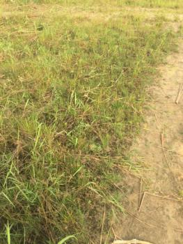2,010 Square Metres, Off Aso Drive, Asokoro District, Abuja, Mixed-use Land for Sale